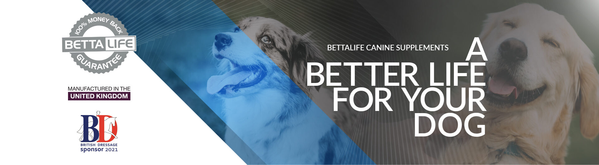 bettalife your your dog banner