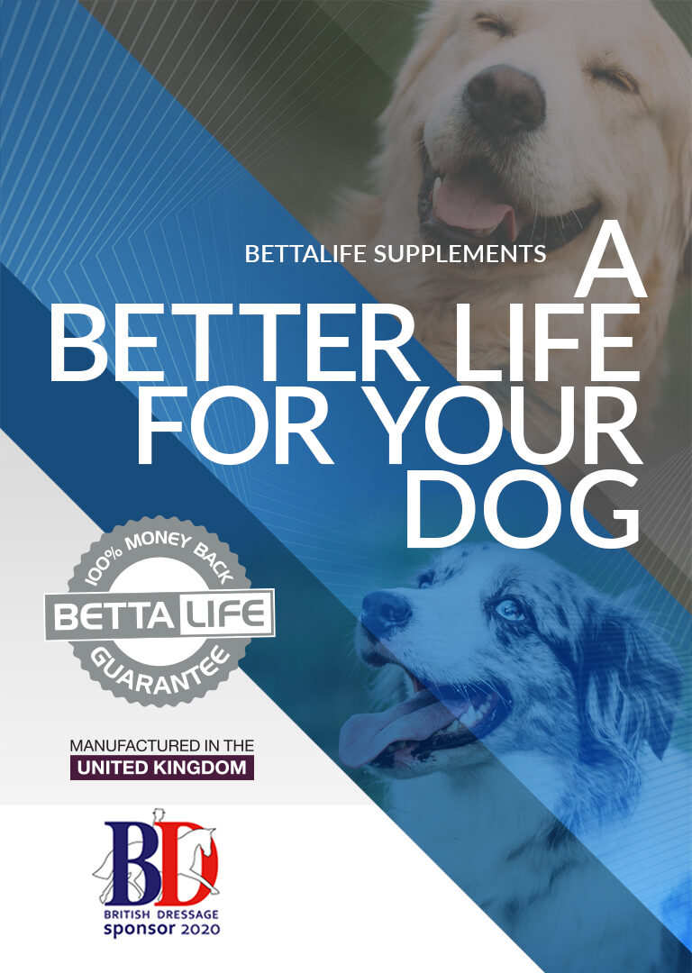 BETTALIFE MOBILE CANINE 768x1080 1