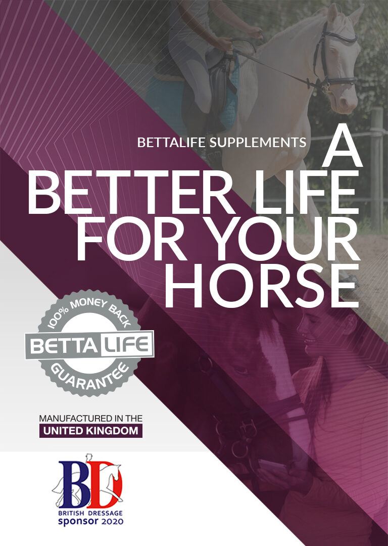 BETTALIFE MOBILE EQUINE 768x1080 1